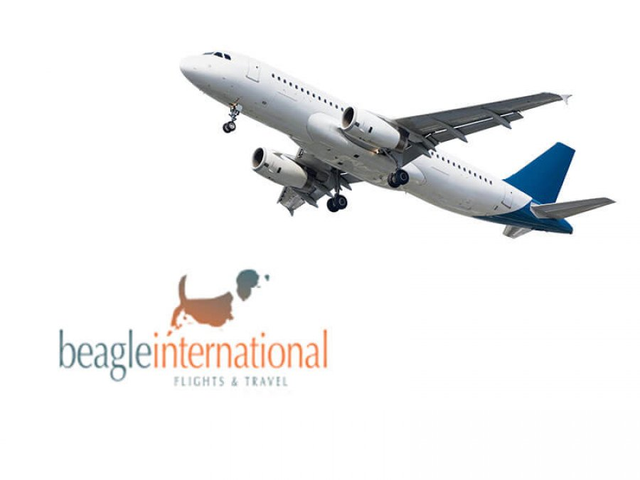 Beagle Flights