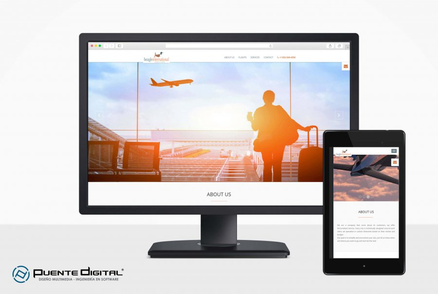 Beagle International Flight Travel, Diseño Web Responsive